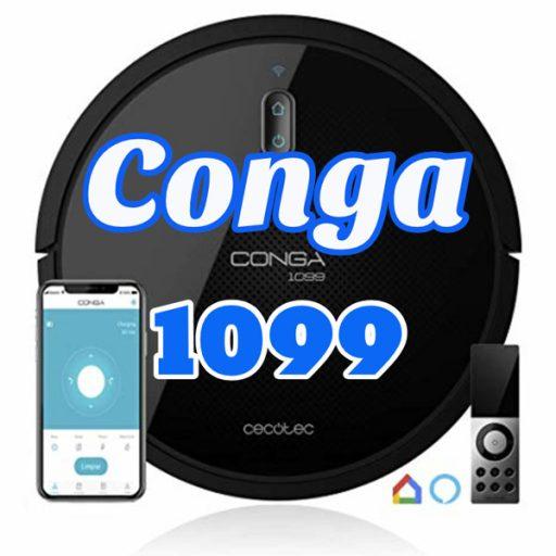 conga 1099